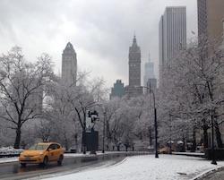 new york tempesta di neve voli cancellati