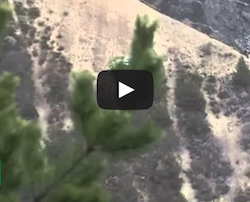 video del luogo dello schianto del volo GermanWings in Francia