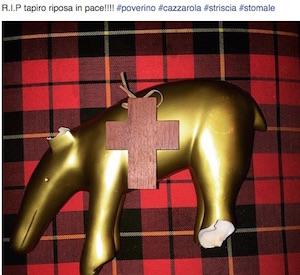 tapiro rotto di belen e stefano