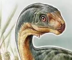 Cile scoperto nuovo dinosauro erbivoro Chilesaurus diegosuarezi