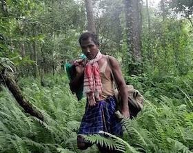 """Jadav """"Molai"""" Payeng l uomo che ha piantato una foresta"""