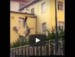video del crollo della facolta di veterinaria federico II napoli in diretta live streaming video