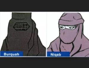 vietati il burquah e il niqab in lombardia le donne devono essere riconoscibili