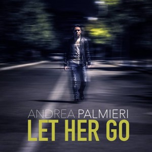 andrea palmieri let her go the voice of italy 2016