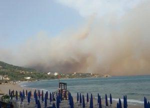 incendi sicilia video immagini ultime notizie