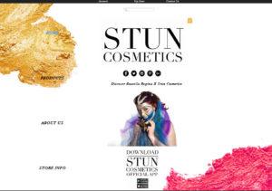 stun cosmetics
