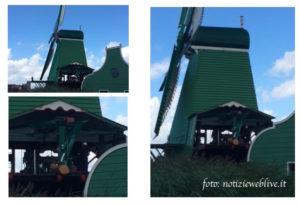 MULINO A vento segheria di zaanse schans vicino ad amsterdam olanda villaggio dei mulini a vento zaandam