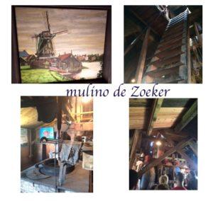 interno mulino de zoeker mulinio per olio zaanse schans